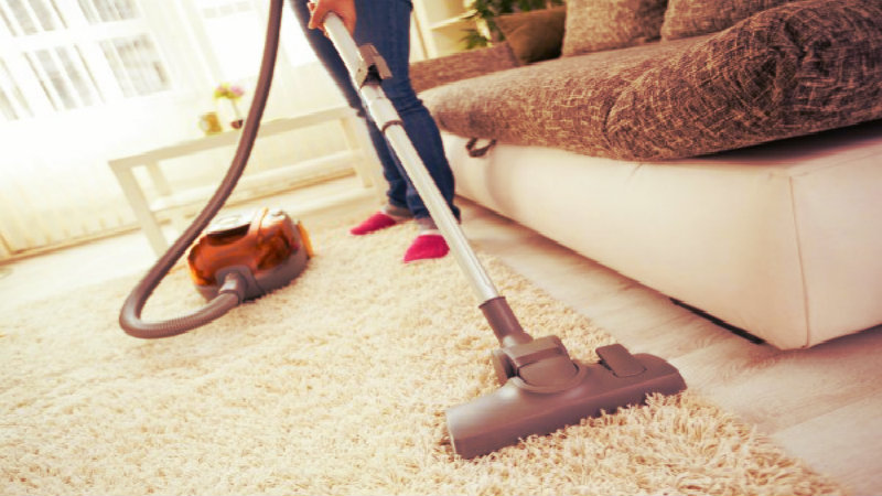 cropped image of lady vacuuming carpet