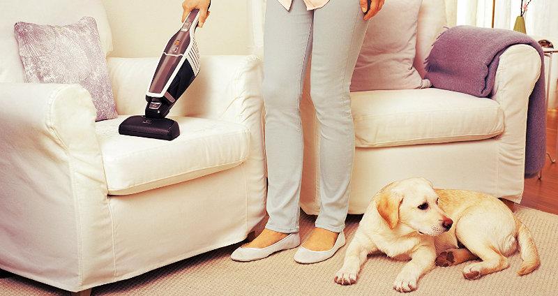 lady vacuuming sofa and dog sitting on floor