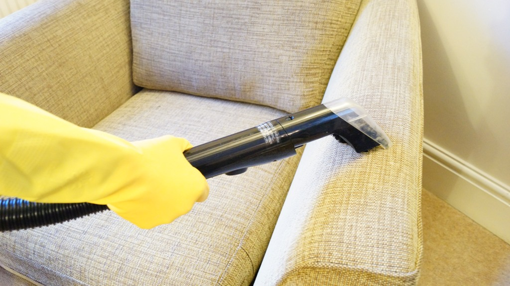 cropped image of a professional vacuuming furniture