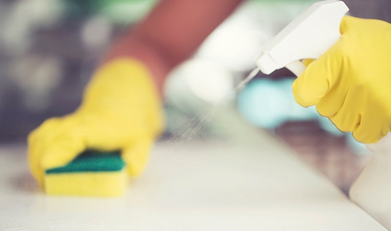 cropped picture of a woman disinfecting a surface